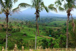 Juan R. Pérez Fotografía de Viajes Bali (Indonesia)