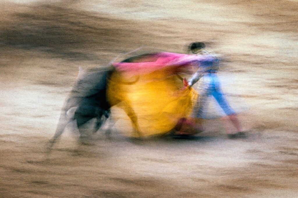 Fotografía de una lidia de toros