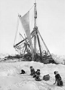 Perros barco nive barco encallado en la Antartida